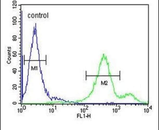 EBPL Rabbit anti-Human, Polyclonal, Invitrogen 400 µL; Unconjugated