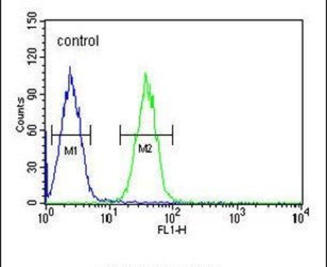 EFHC2 Rabbit anti-Human, Polyclonal, Invitrogen 400 µL; Unconjugated