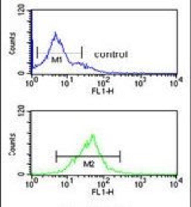 eIF3g Rabbit anti-Human, Polyclonal, Invitrogen 400 µL; Unconjugated