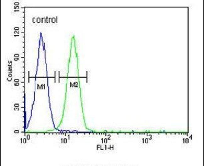 EMX2 Rabbit anti-Human, Polyclonal, Invitrogen 400 µL; Unconjugated