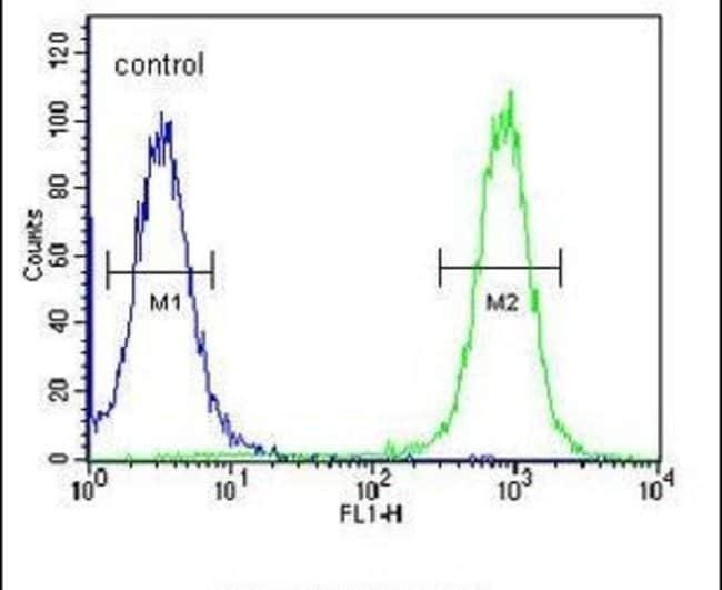EPC2 Rabbit anti-Human, Mouse, Polyclonal, Invitrogen 400 µL; Unconjugated