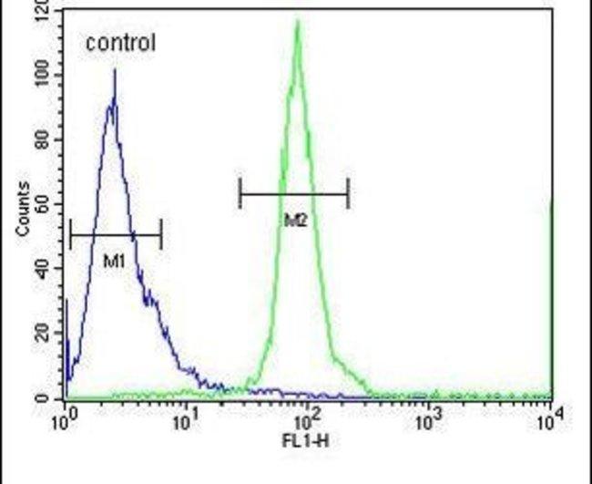 ESCO2 Rabbit anti-Human, Mouse, Polyclonal, Invitrogen 400 µL; Unconjugated
