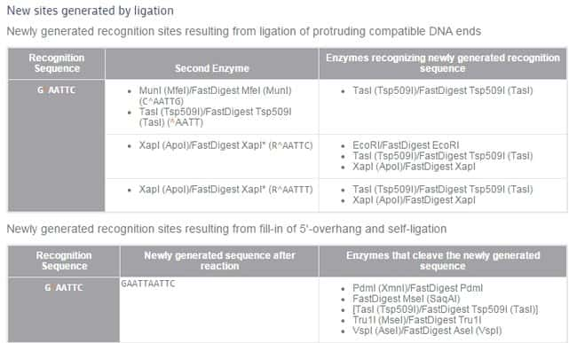 Thermo Scientific™FastDigest EcoRI: Restriktionsenzyme Enzyme und Inhibitoren