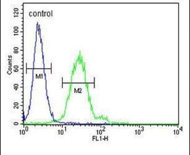 EpCAM Rabbit anti-Human, Polyclonal, Invitrogen 400 µL; Unconjugated