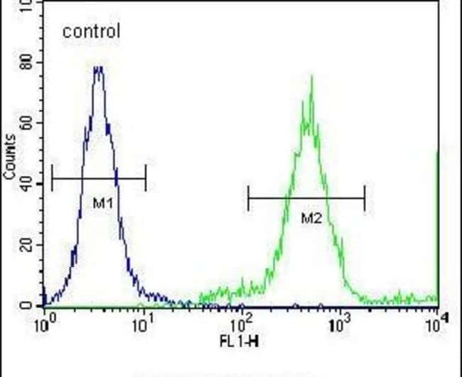 FAM26E Rabbit anti-Human, Mouse, Polyclonal, Invitrogen 400 µL; Unconjugated