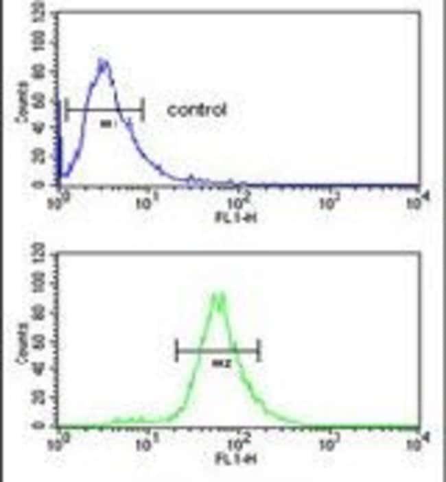 FBXL5 Rabbit anti-Human, Mouse, Polyclonal, Invitrogen 400 µL; Unconjugated