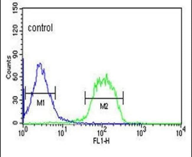 FBXO3 Rabbit anti-Human, Polyclonal, Invitrogen 400 µL; Unconjugated