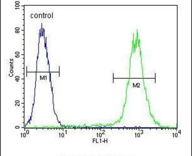 FGF9 Rabbit anti-Human, Mouse, Polyclonal, Invitrogen 400 µL; Unconjugated
