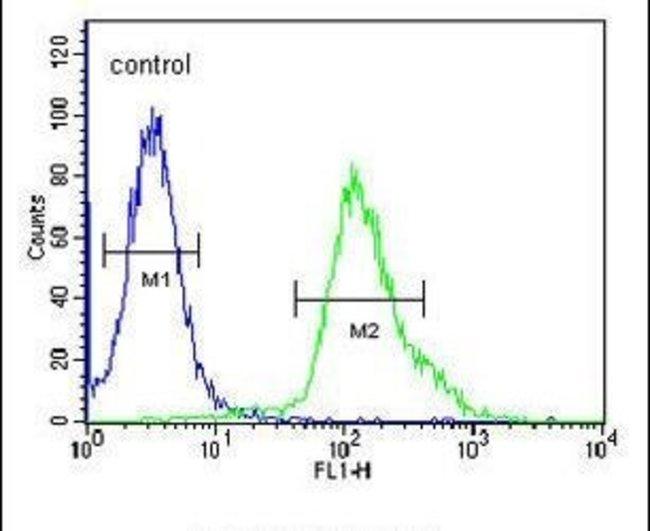 FGFBP3 Rabbit anti-Human, Mouse, Polyclonal, Invitrogen 400 µL; Unconjugated