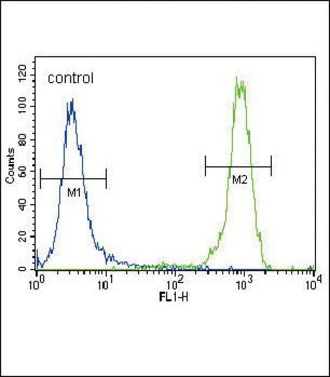 FGFR2 Rabbit anti-Human, Mouse, Polyclonal, Invitrogen 400 µL; Unconjugated