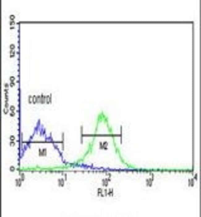 FKBP14 Rabbit anti-Human, Polyclonal, Invitrogen 400 µL; Unconjugated