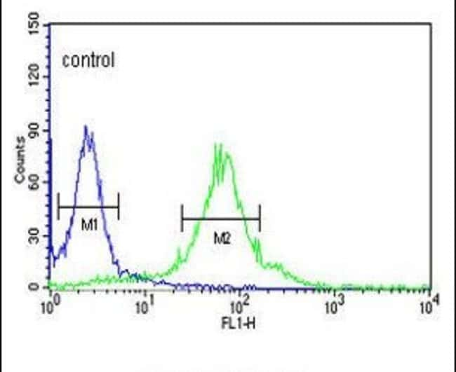 FKBP2 Rabbit anti-Human, Mouse, Polyclonal, Invitrogen 400 µL; Unconjugated