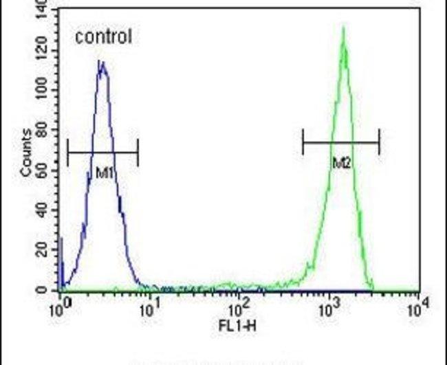 AAGAB Rabbit anti-Human, Polyclonal, Invitrogen 400 µL; Unconjugated