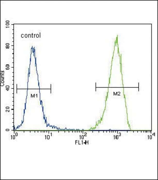 FLT3 Rabbit anti-Human, Polyclonal, Invitrogen 400 µL; Unconjugated