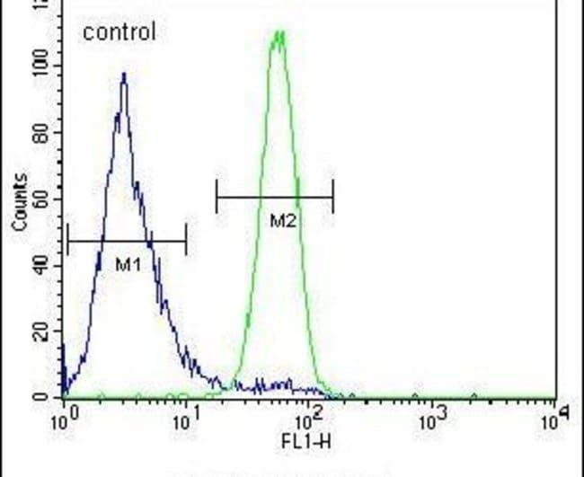 FSTL1 Rabbit anti-Human, Polyclonal, Invitrogen 400 µL; Unconjugated