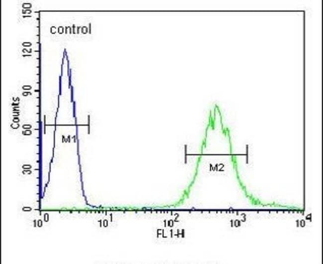 FUT6 Rabbit anti-Human, Polyclonal, Invitrogen 400 µL; Unconjugated