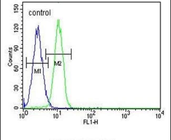 G6PC Rabbit anti-Human, Polyclonal, Invitrogen 400 µL; Unconjugated