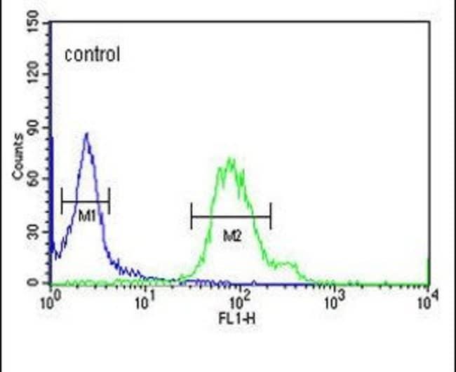 GABARAPL1 Rabbit anti-Human, Polyclonal, Invitrogen 400 μL; Unconjugated:Antibodies