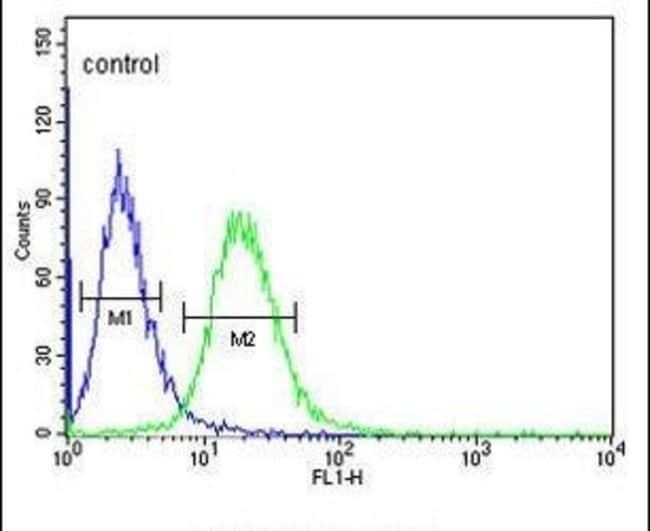 GABRA4 Rabbit anti-Human, Polyclonal, Invitrogen 400 µL; Unconjugated