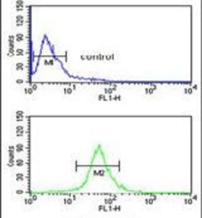 GABRD Rabbit anti-Human, Polyclonal, Invitrogen 400 µL; Unconjugated