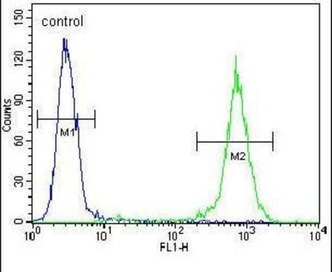 GGTLC2 Rabbit anti-Human, Polyclonal, Invitrogen 400 µL; Unconjugated