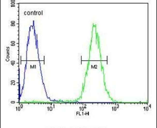 GNAT1 Rabbit anti-Human, Mouse, Polyclonal, Invitrogen 400 µL; Unconjugated