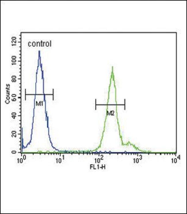 GPM6A Rabbit anti-Human, Polyclonal, Invitrogen 400 µL; Unconjugated