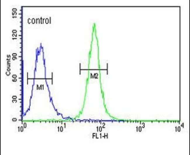GTF2IRD2 Rabbit anti-Human, Polyclonal, Invitrogen 400 µL; Unconjugated