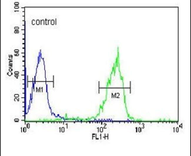 Granzyme B Rabbit anti-Human, Mouse, Polyclonal, Invitrogen 400 µL;