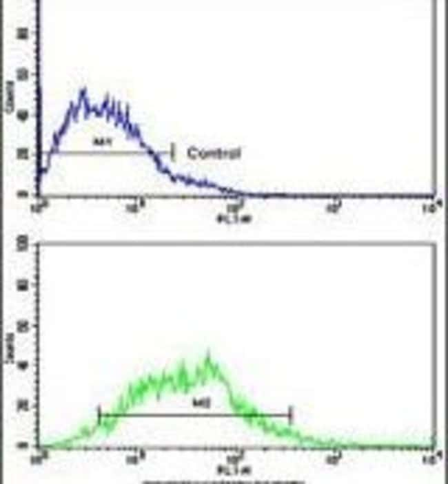 H-cadherin Rabbit anti-Human, Polyclonal, Invitrogen 400 µL; Unconjugated