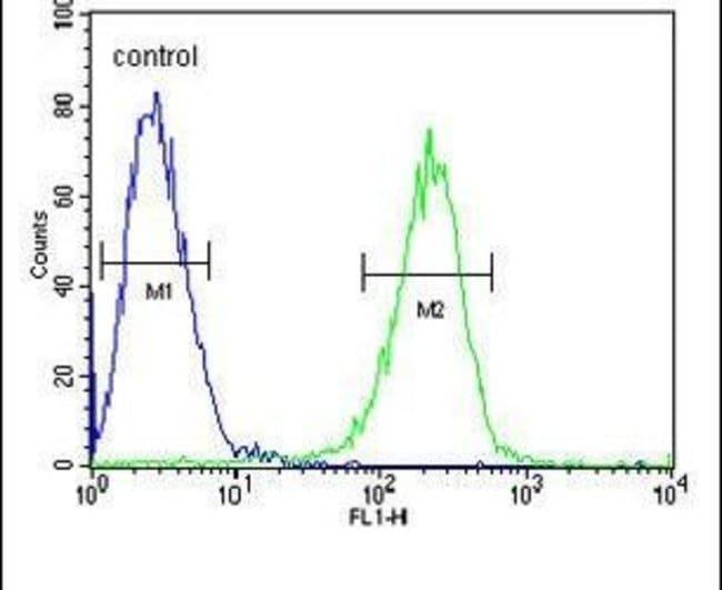 HADHB Rabbit anti-Human, Polyclonal, Invitrogen 400 µL; Unconjugated