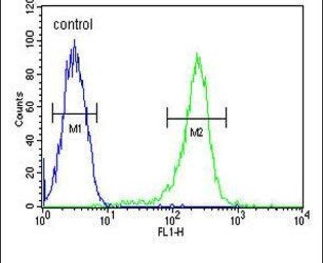 HAUS5 Rabbit anti-Human, Polyclonal, Invitrogen 400 µL; Unconjugated