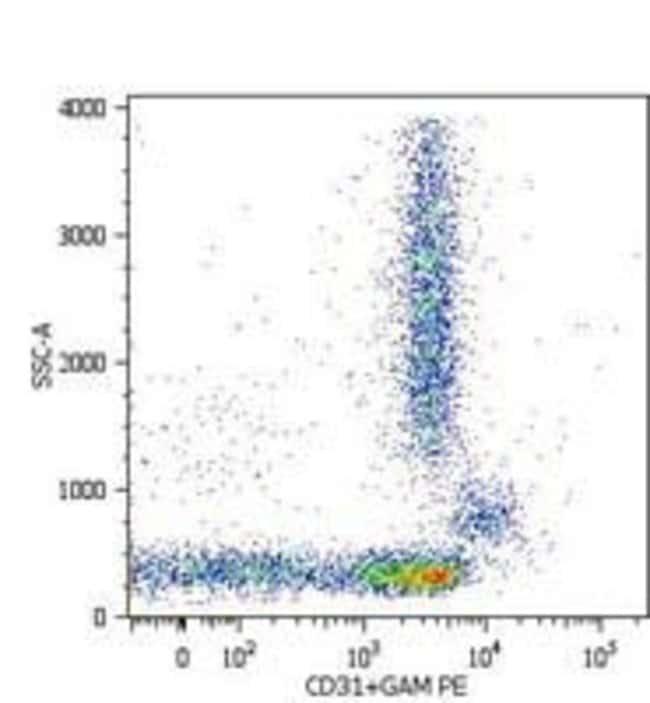 CD31 Mouse anti-Human, Clone: MEM-05, Invitrogen 100 μg; Unconjugated:Antibodies