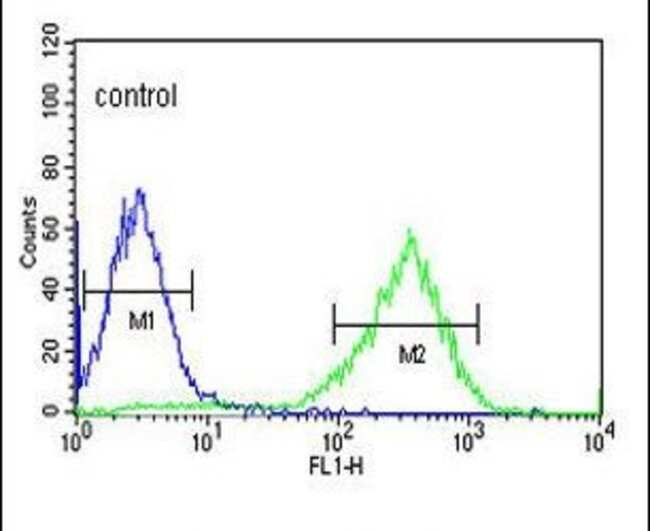 HFE2 Rabbit anti-Human, Polyclonal, Invitrogen 400 µL; Unconjugated