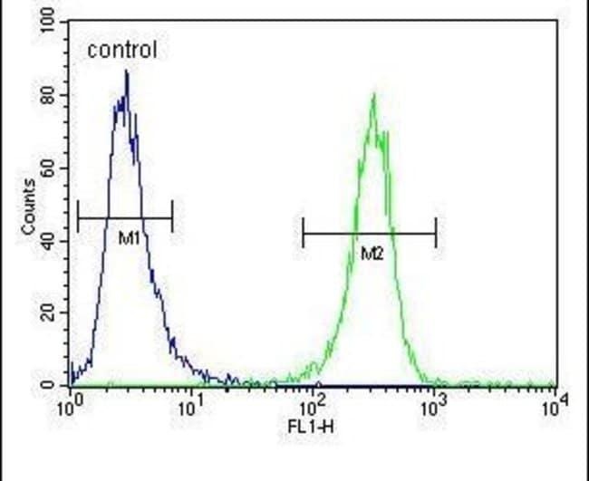 HFM1 Rabbit anti-Human, Polyclonal, Invitrogen 400 µL; Unconjugated
