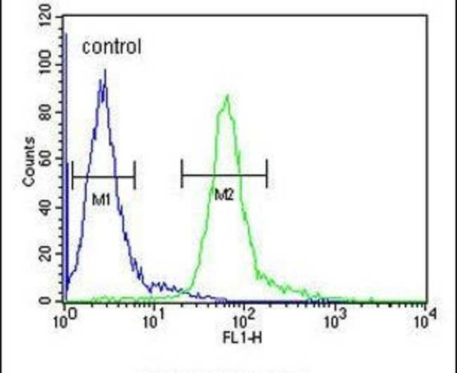 Histone H1.5 Rabbit anti-Human, Polyclonal, Invitrogen 400 µL; Unconjugated