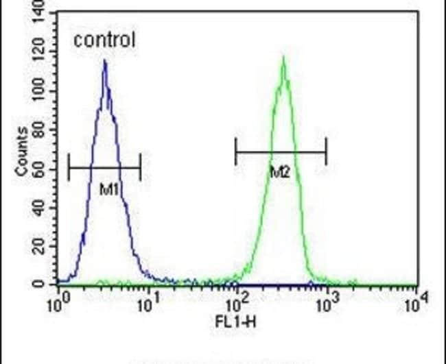 HOXA9 Rabbit anti-Human, Polyclonal, Invitrogen 400 µL; Unconjugated