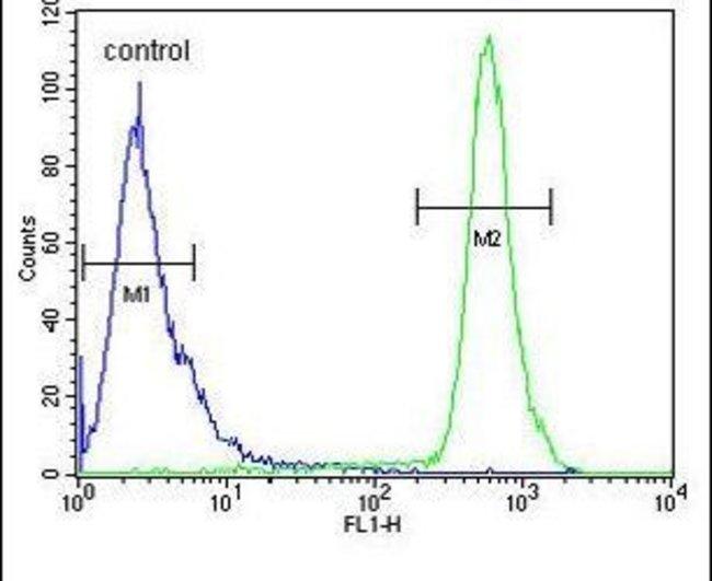 HS3ST2 Rabbit anti-Human, Polyclonal, Invitrogen 400 µL; Unconjugated