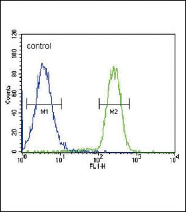 HSD17B2 Rabbit anti-Human, Polyclonal, Invitrogen 400 µL; Unconjugated