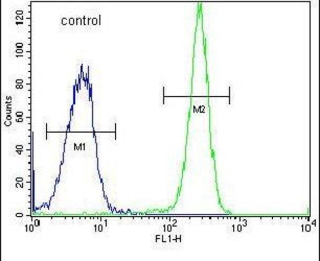 HYAL2 Rabbit anti-Human, Polyclonal, Invitrogen 400 µL; Unconjugated