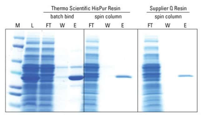 Thermo Scientific HisPur Ni-NTA Resin :Life Sciences:Protein Biology