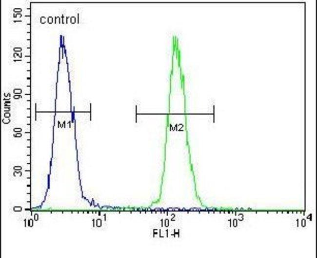 IPCEF1 Rabbit anti-Human, Polyclonal, Invitrogen 400 µL; Unconjugated