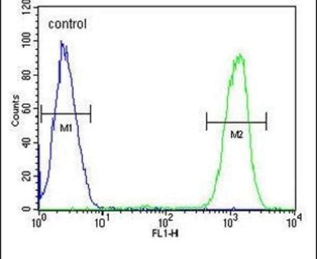 IKAROS Rabbit anti-Human, Polyclonal, Invitrogen 400 µL; Unconjugated