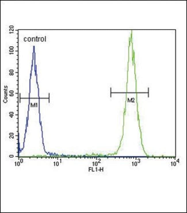 IL-4 Rabbit anti-Human, Mouse, Polyclonal, Invitrogen 400 µL; Unconjugated