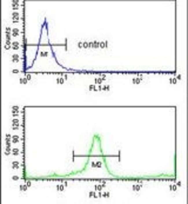 KIR3DL3 Rabbit anti-Human, Polyclonal, Invitrogen 400 µL; Unconjugated