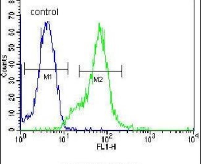 LGALS9B Rabbit anti-Human, Mouse, Polyclonal, Invitrogen 400 µL; Unconjugated