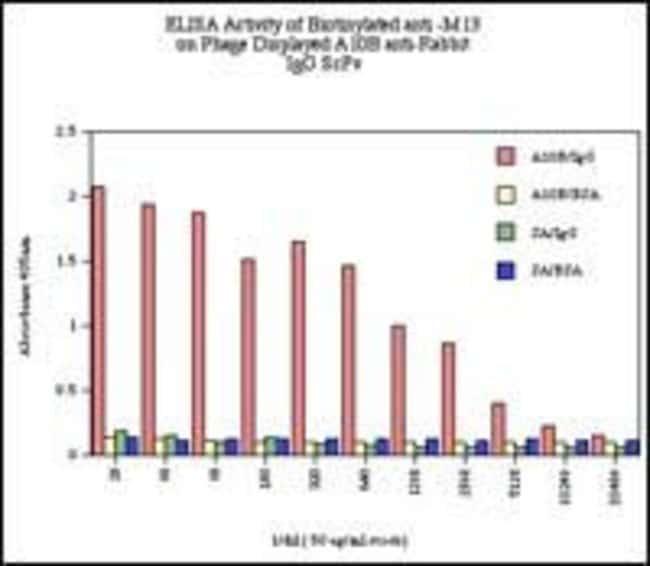 M13 Phage coat protein Mouse anti-Virus, Biotin, Clone: E1, Invitrogen