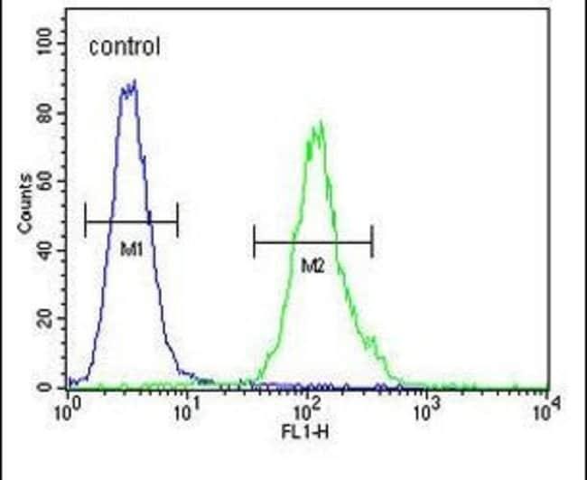 MS4A4A Rabbit anti-Human, Polyclonal, Invitrogen 400 µL; Unconjugated