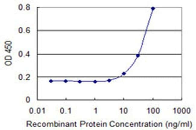 SIN3B Mouse anti-Human, Clone: 2C11, Invitrogen 100 µg; Unconjugated