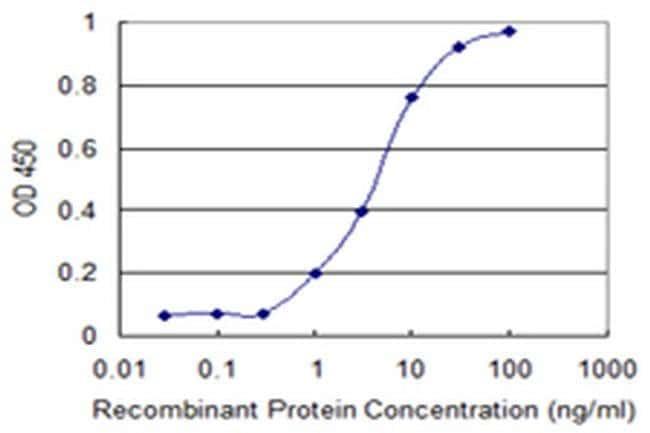 SFRS12 Mouse anti-Human, Clone: 1D11, Invitrogen 100 µg; Unconjugated